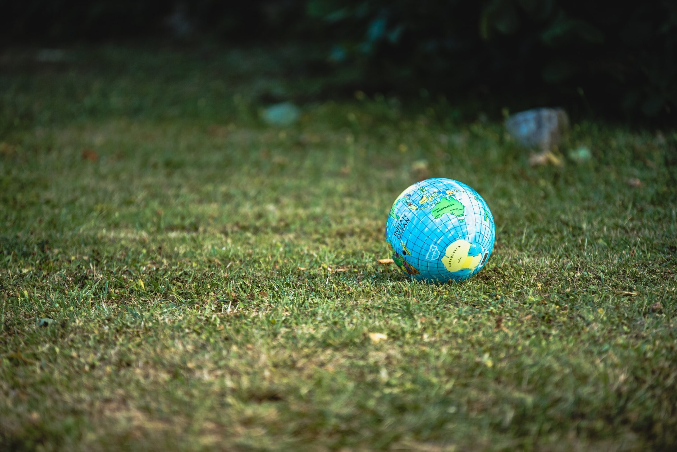 Moving from the Millennium to the Sustainable Development Goals